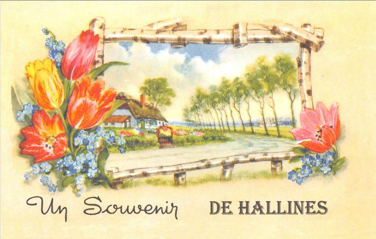 Hallines (1)