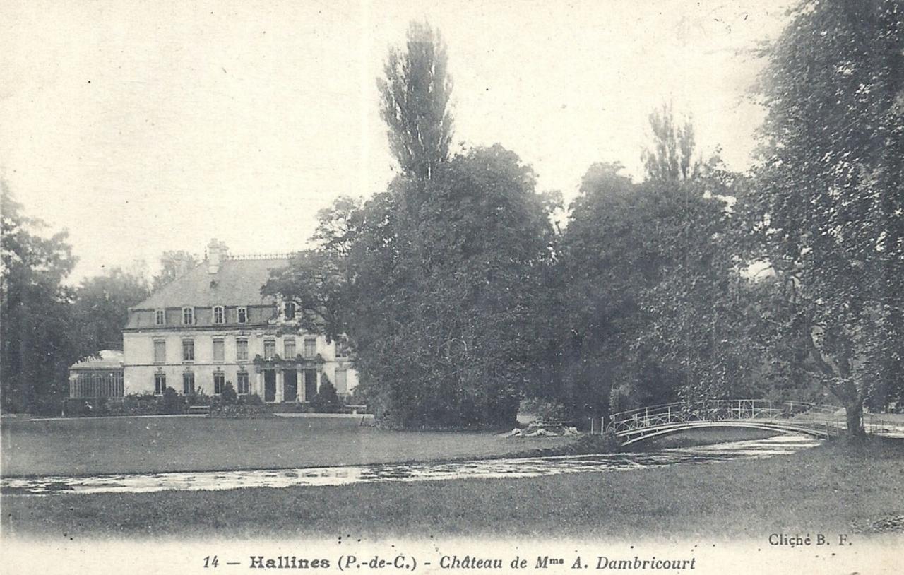 Hallines (10)