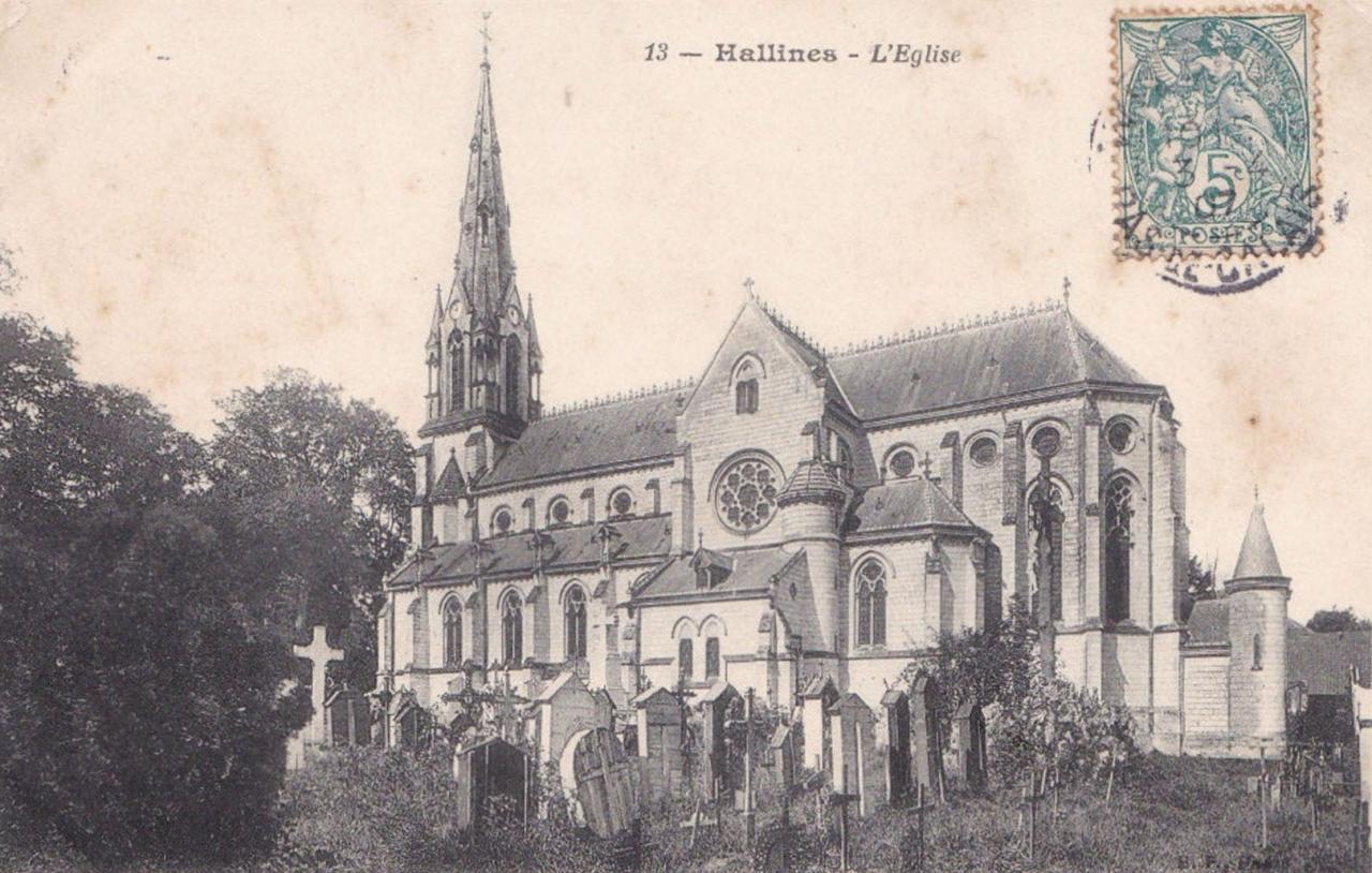 Hallines (17)