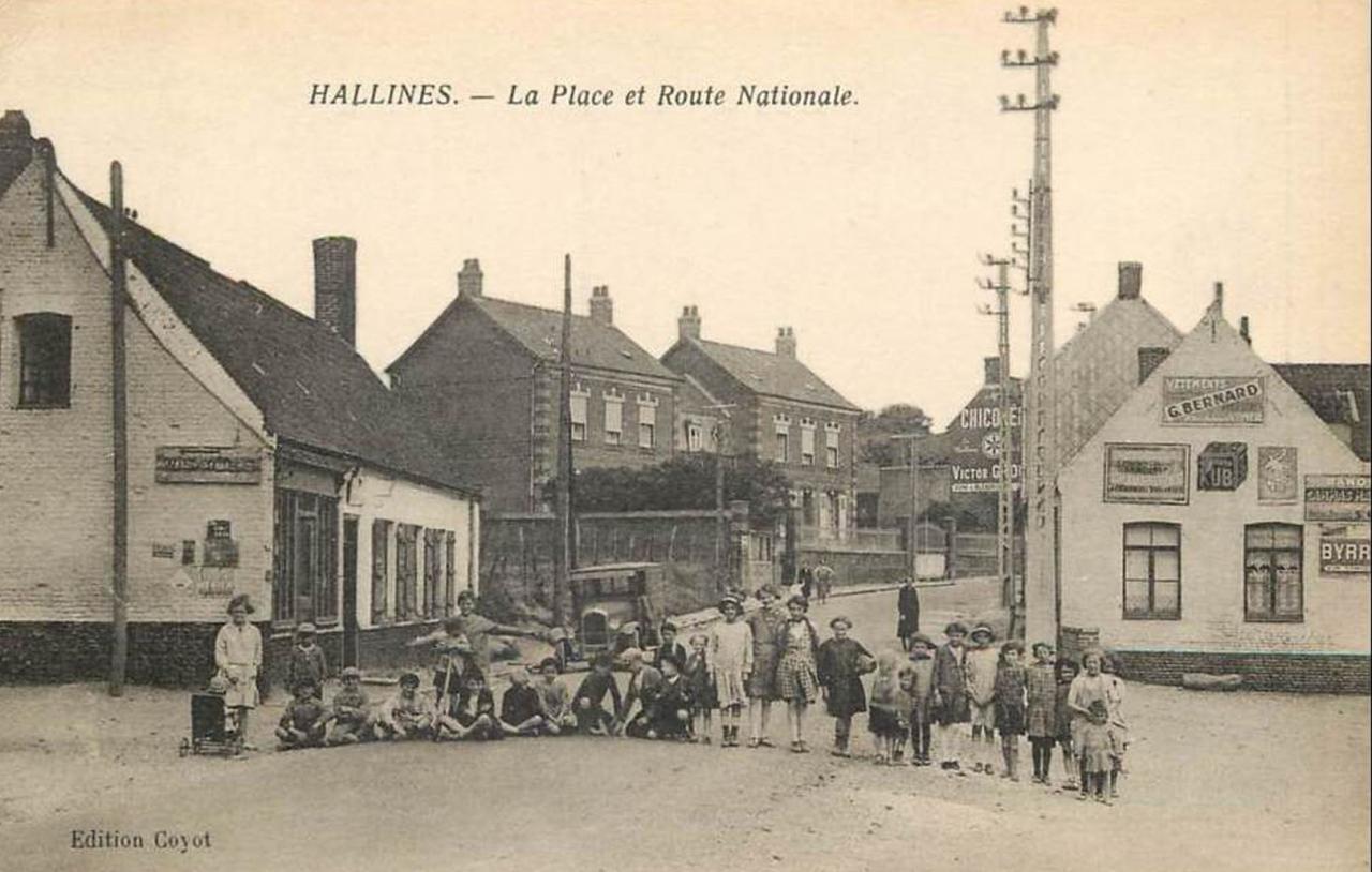 Hallines (18)