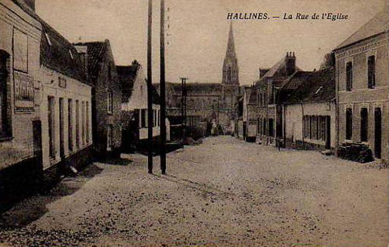 Hallines (19)