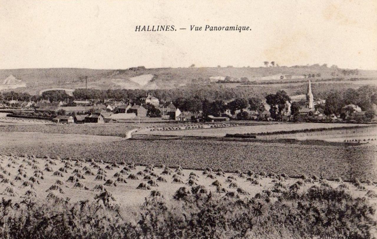 Hallines (4)