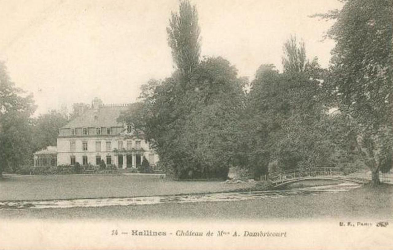 Hallines (7)