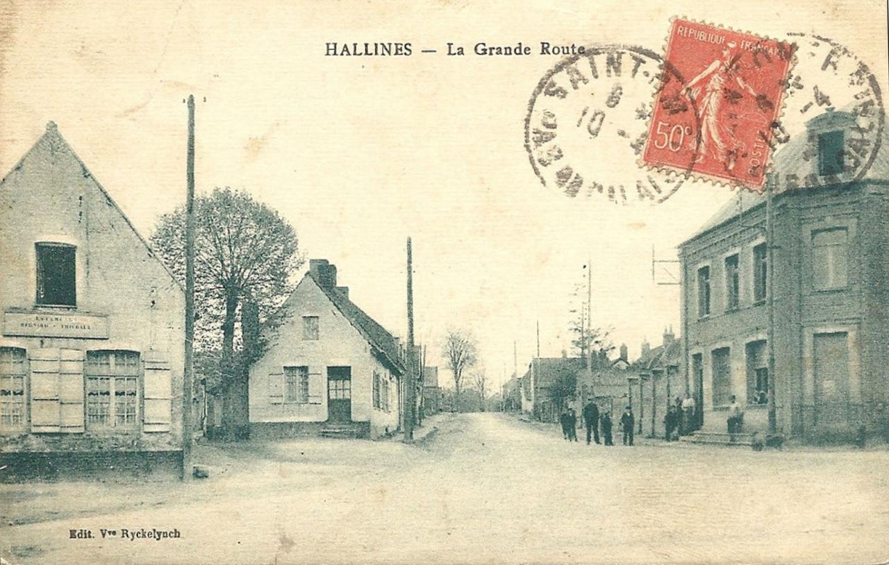 Hallines (9)